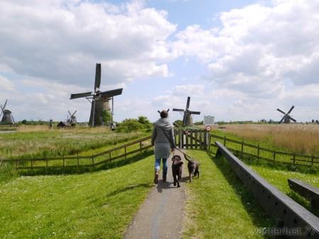 2014_0507オランダ20140351