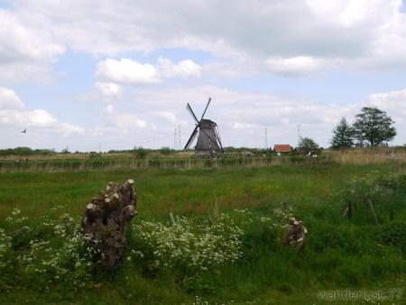 2014_0507オランダ20140279
