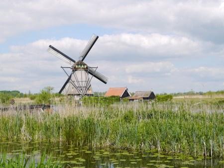 2014_0507オランダ20140206