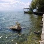 【Balkans2018-32】Ohrid(オフリド)Plaoshnikの丘とLakeside Walk