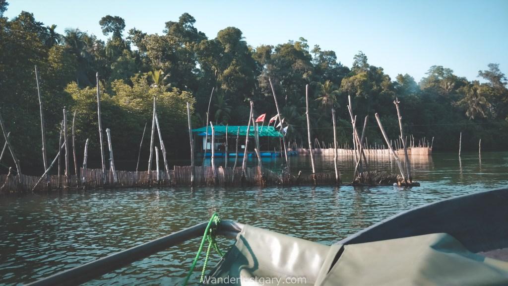 Mangroves of Sri Lanka - Wanderlustgary.com