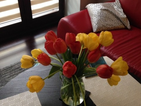 Home Tulips