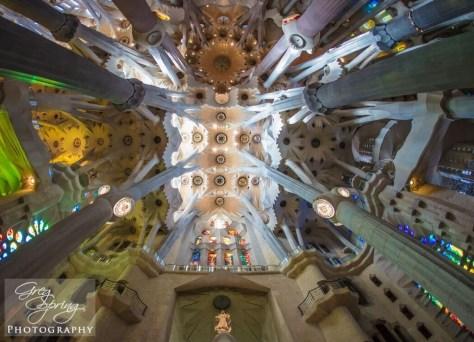 ceiling-sagrada