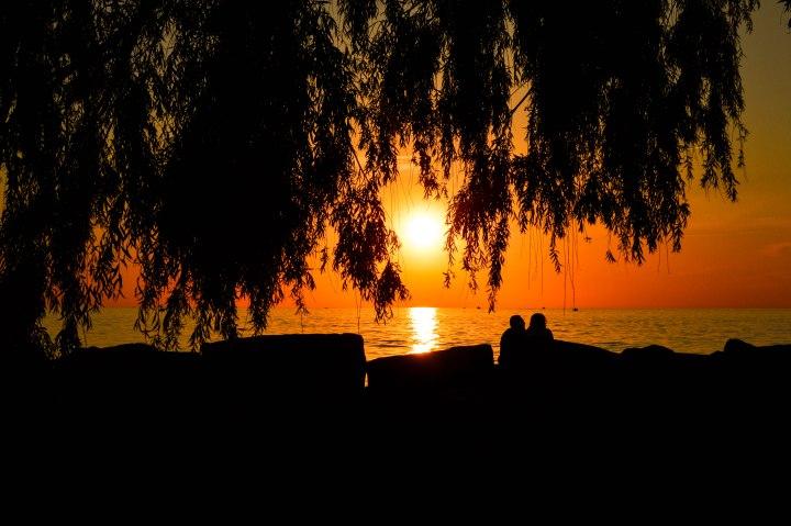 Willow Tree- Sunset1