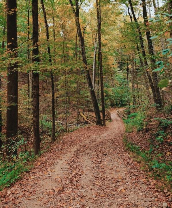 brecksville reservation best fall hikes near cleveland