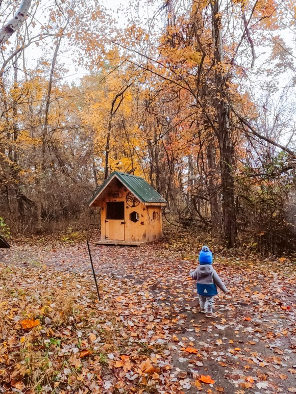 kid friendly hikes in northeast ohio carlisle reservation