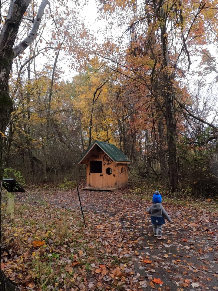 7 Kid Friendly Hikes in Northeast Ohio