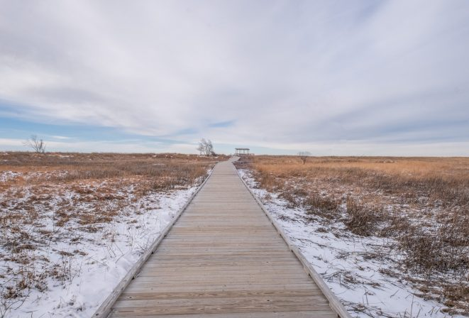 headlands dunes state nature preserve