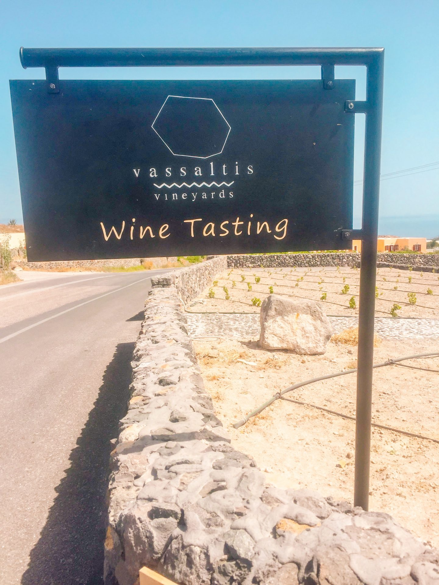 vassaltis winery sign and vineyards in the background on Santorini in Greece