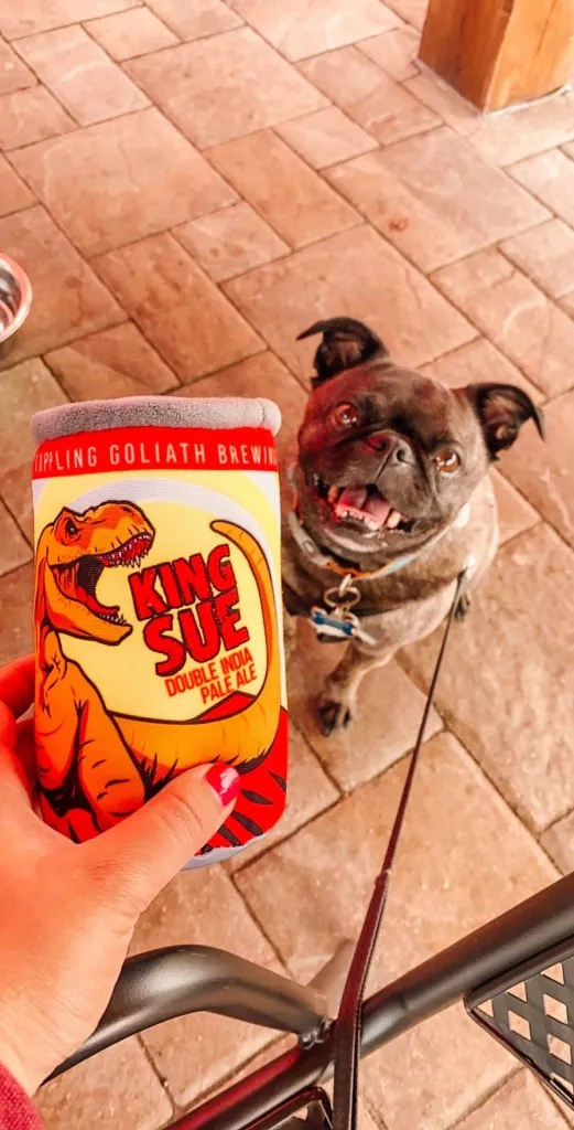 Bugg dog smiling at his new beer shaped toy at Toppling goliath brewery in Decorah, Iowa
