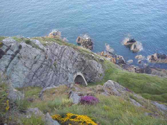 Cliffs and flowers of Bray cliff walk