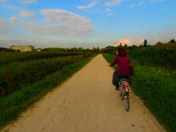 Cycling by a Belgian wheat farm, just outside Leuven.