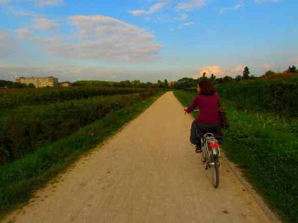 Cycling by a Belgian wheat farm, just outside Leuven.