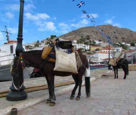 The only method of transport allowed on Hydra aside from your feet, are donkeys.