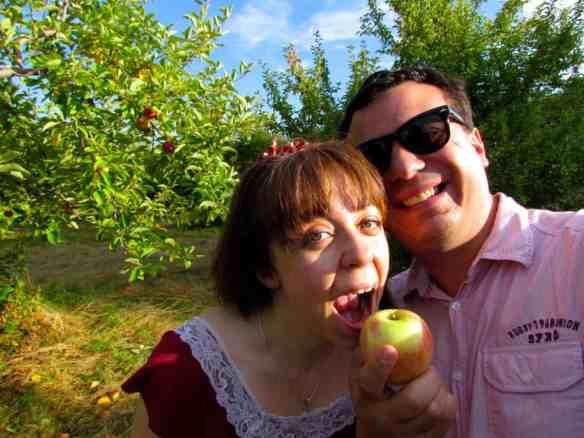 apple picking outside Boston, Massachusetts