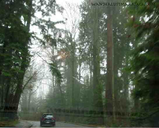 Driving through Stanley Park