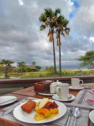 Luxury safari holidays in Africa