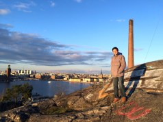view of Stockholm's skyline
