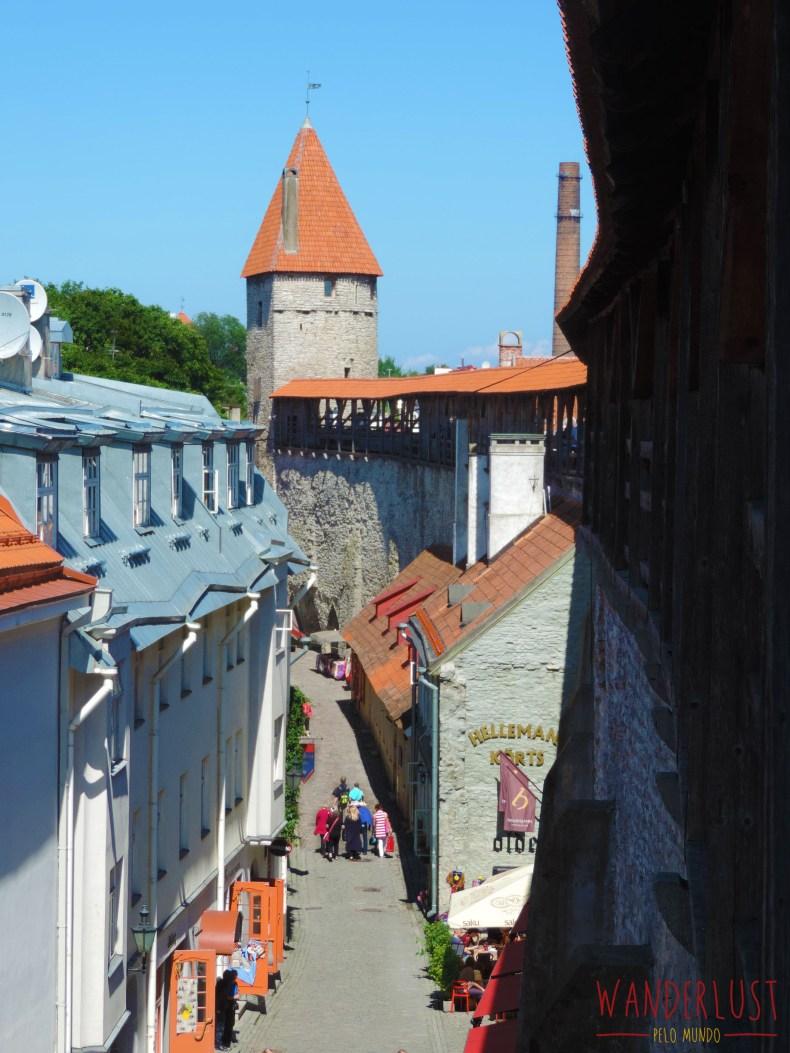 DSCN3854e50logo - Tallinn, o berço da Estônia