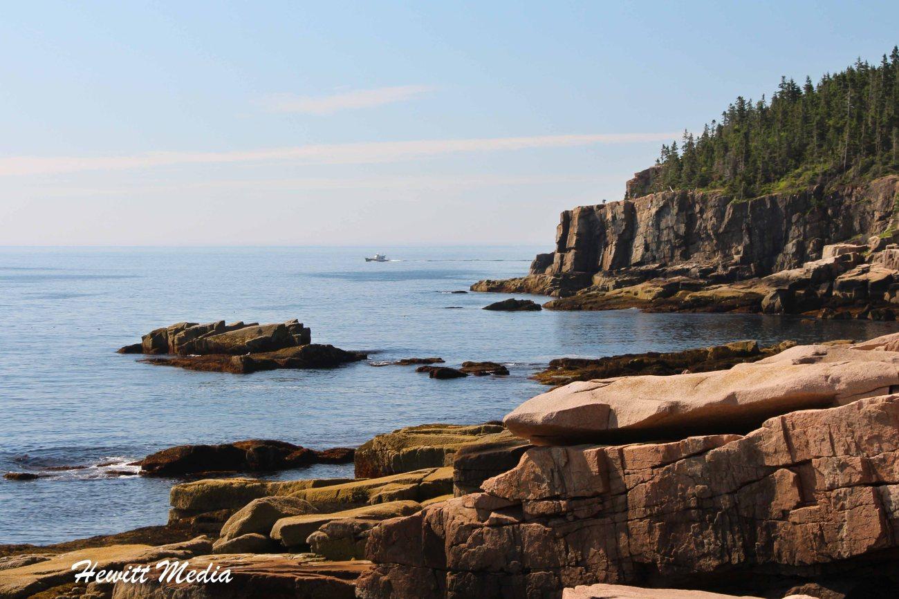 Acadia-8380