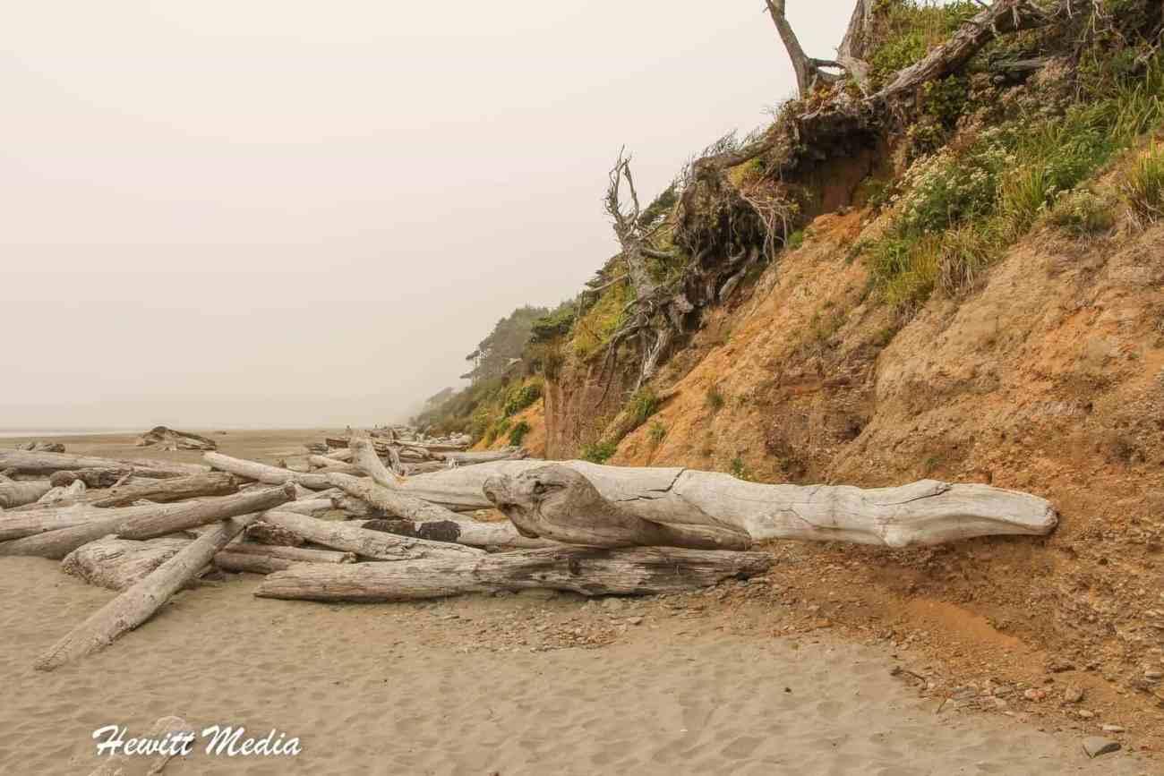 Kalaloch beach-3920