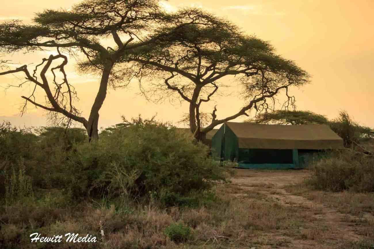 Serengeti Camping-47
