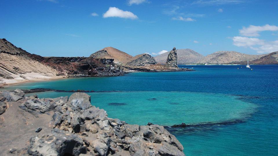 The Galapagos Islands.jpg