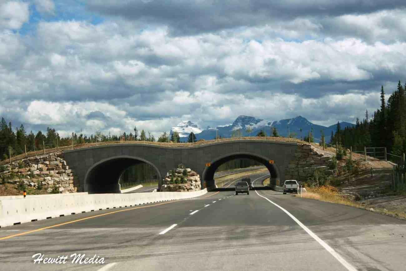 Banff-6807