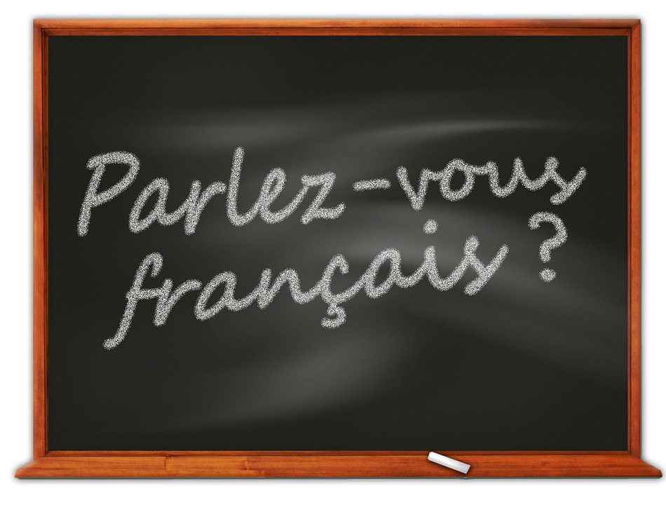 Friday Sound-Off:  What Tool is Best for Learning a Language?