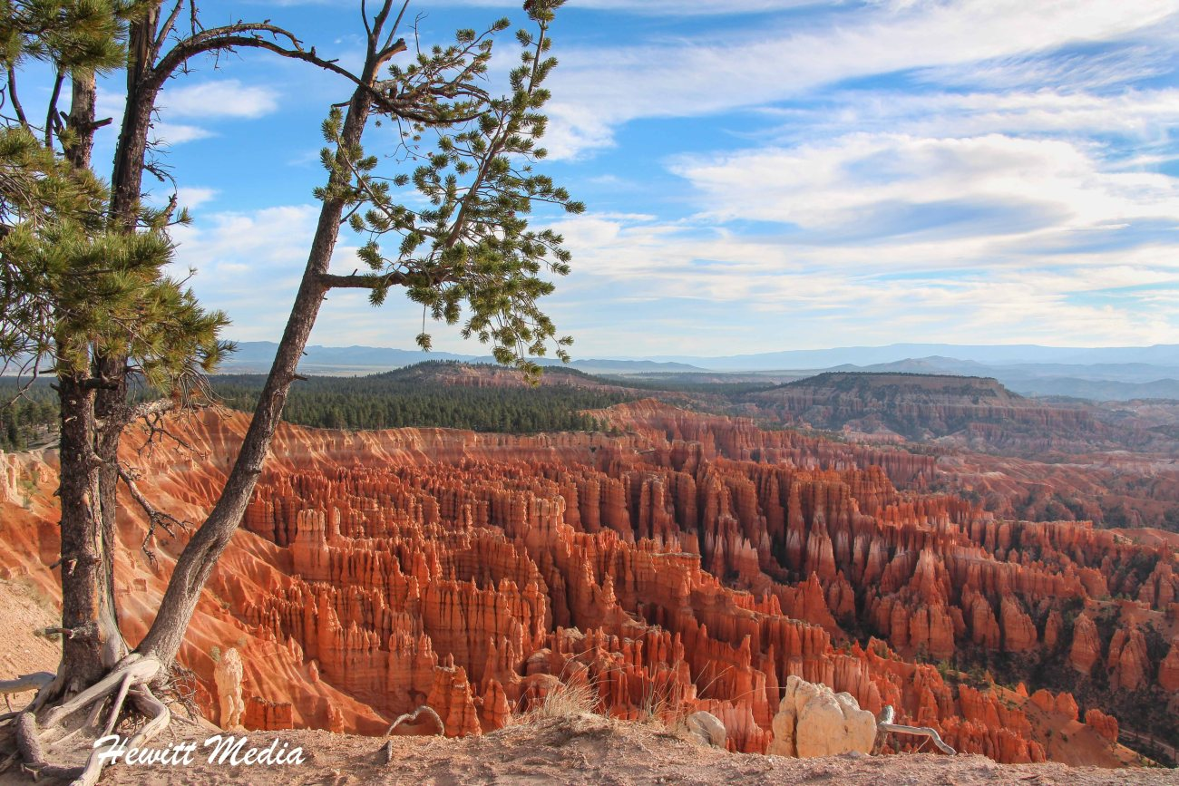 Bryce Canyon-3330.jpg
