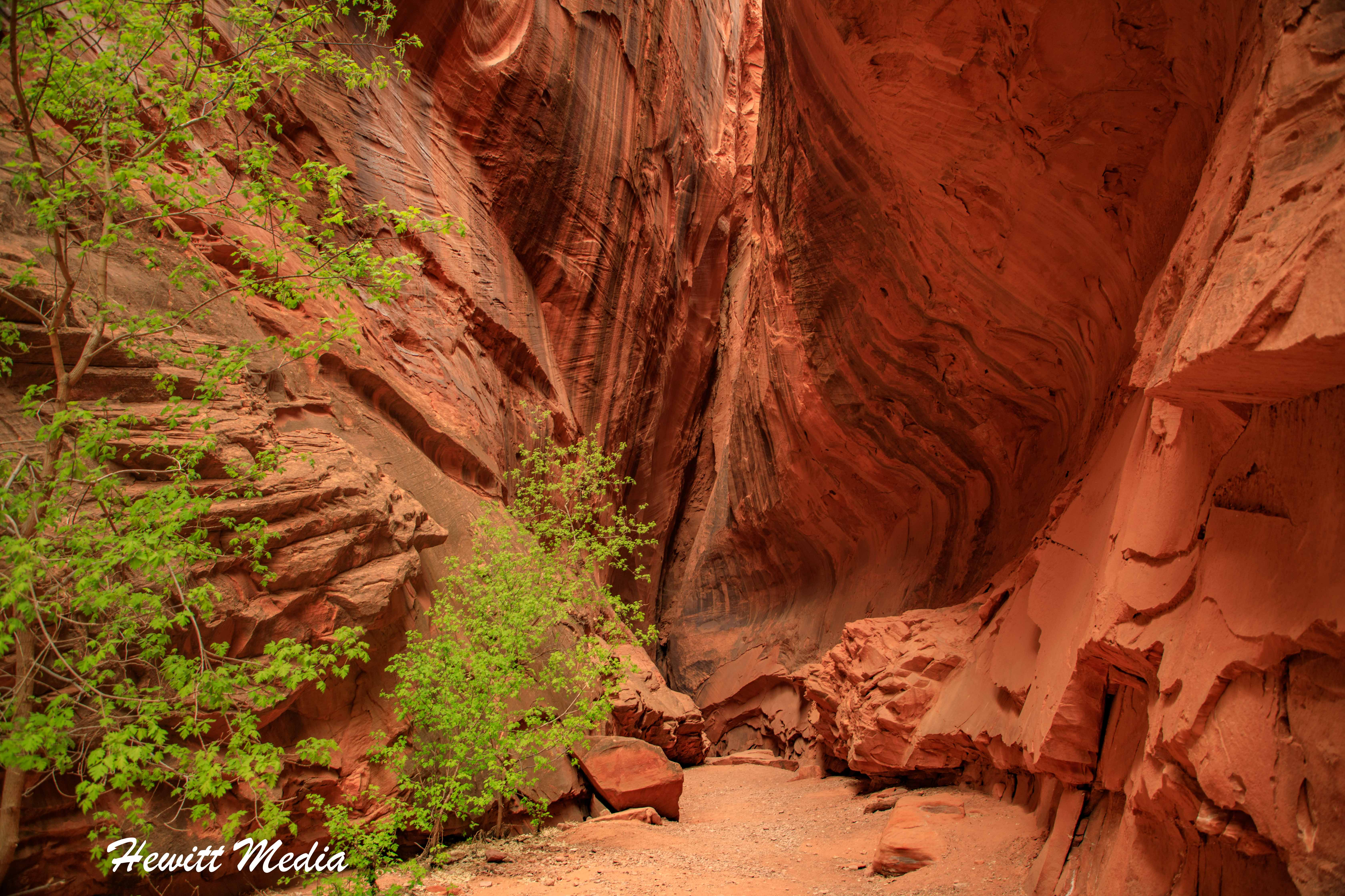 Long Slot Canyon