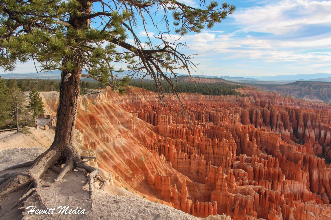 Bryce Canyon National Park-3301