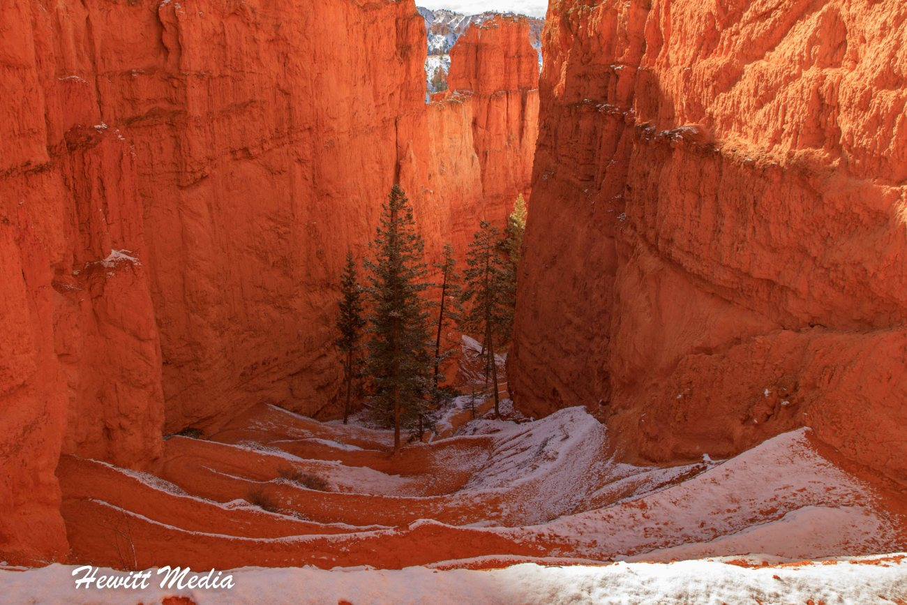 Bryce Canyon National Park-6967