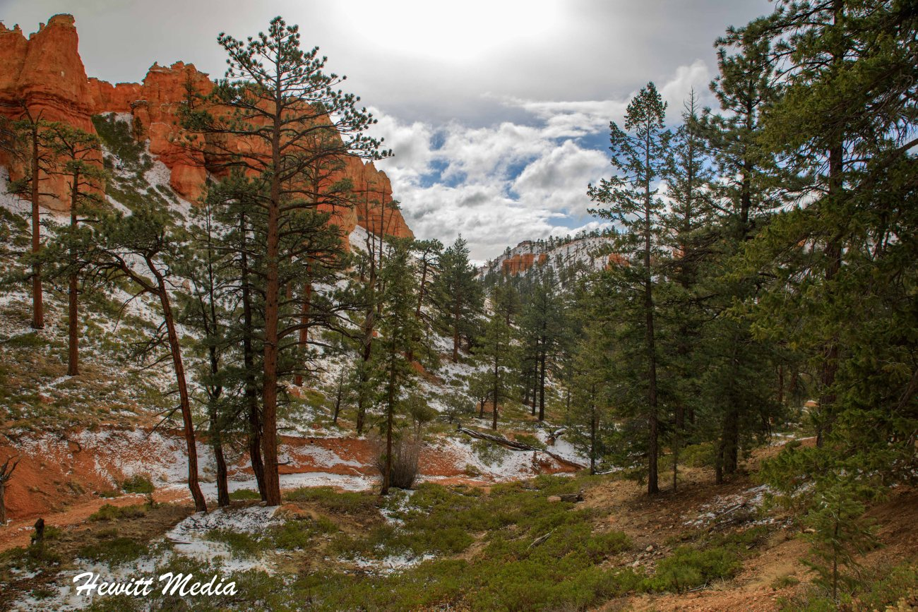 Bryce Canyon National Park-6992