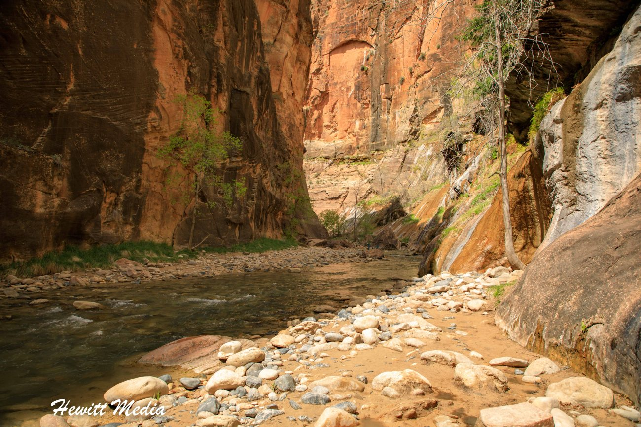 Zion National Park (Narrows)-6520