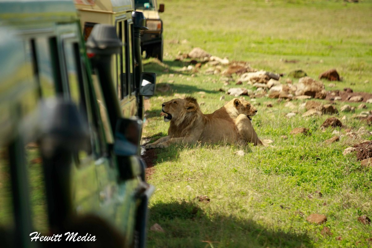 The Art of Travel Photography - Tips for Photography on African Safaris