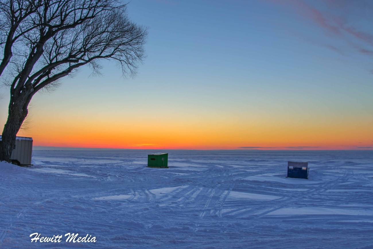 Winter Shots-0145.jpg