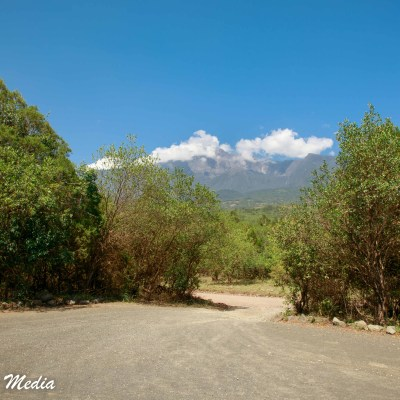 The road thru Arusha National Park
