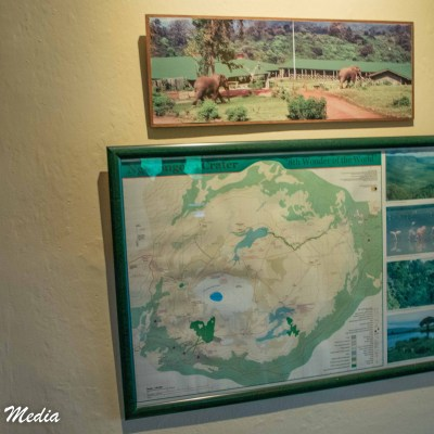 This picture on the wall shows elephants on the ground of the Rhino Lodge outside the Ngorongoro Crater