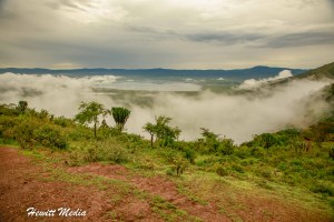 Ngorongoro Crater Safari Guide