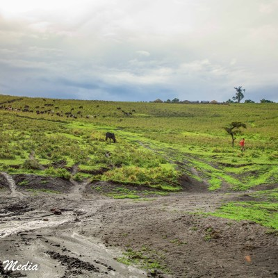 Heading to the Ngorongoro Crater