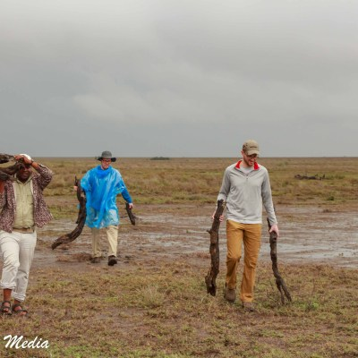 Searching for wood to help us get unstuck in the Serengeti National Park