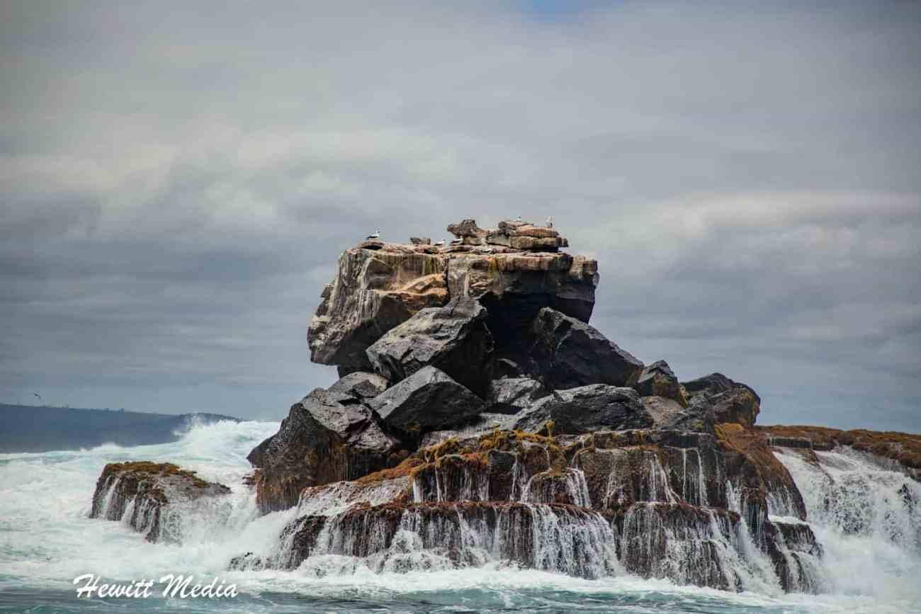 Galapagos-9986.jpg