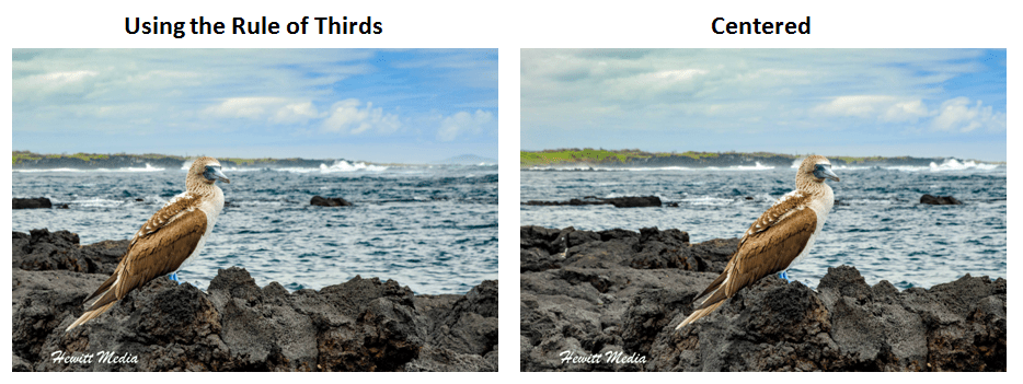Rule of Thirds Example.png