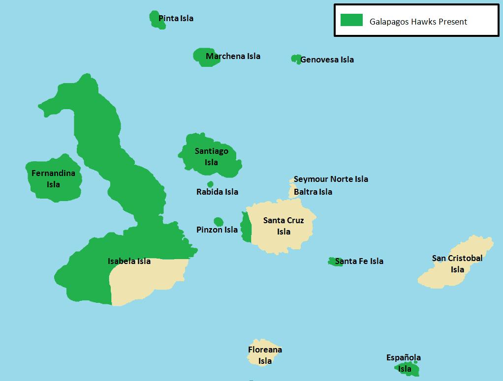 Galapagos Hawks.png