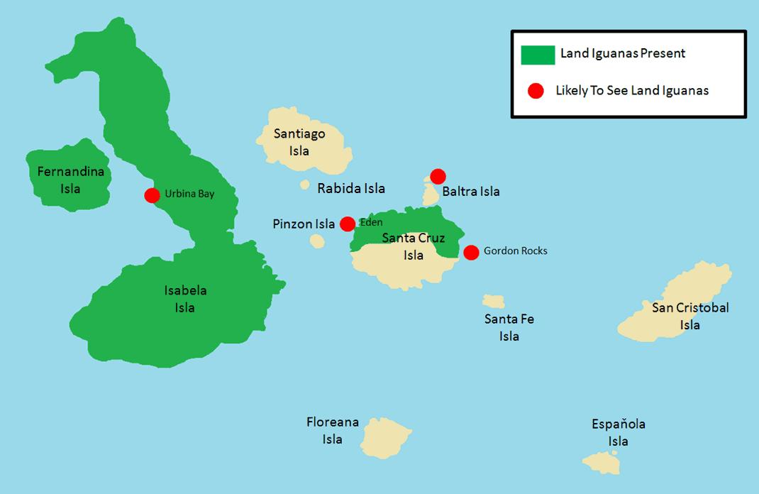 Land Iguanas.png