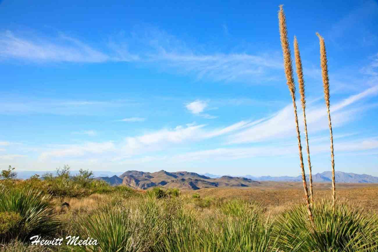 Big Bend National Park-5585.jpg