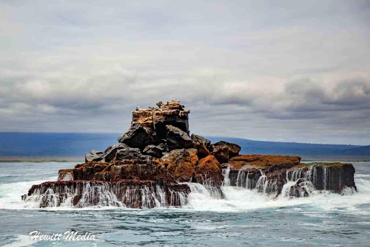 Galapagos-0008.jpg