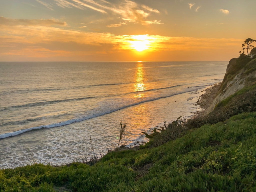 Travel Journal (1/30/2019):  Sunsets and Seal Rescues