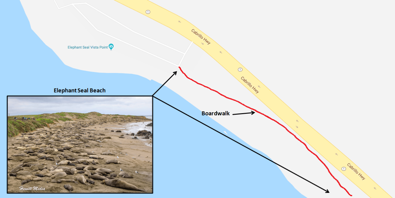 Elephant Seal Vista Point Region Detail Map.png